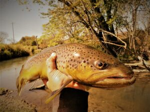 2012 Fishing Season